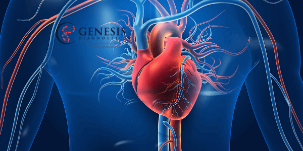 The 5 most common cardiovascular diseases